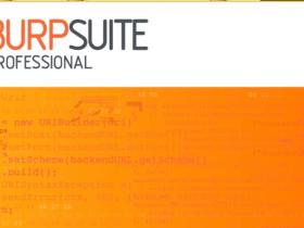 黑客工具 Burpsuite 插件开发 视频教程 价值300元