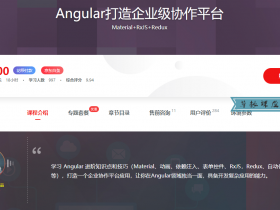 Angular打造企业级协作平台 抢先学习,让你在Angular领域中出类拔萃