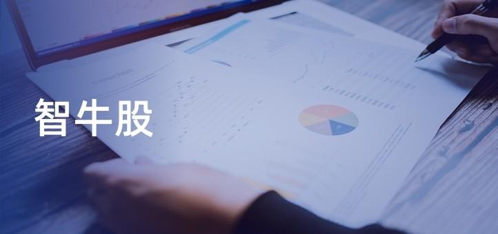 JavaEE企业级实战项目-智牛股 网盘下载
